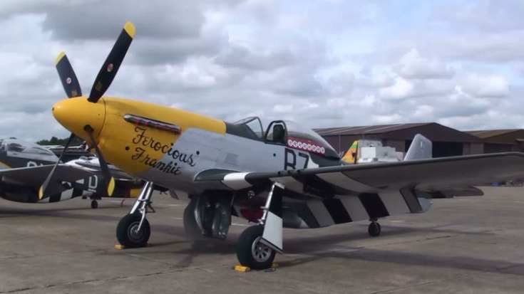 Pure P-51 Mustang Whistle Sounds | World War Wings Videos