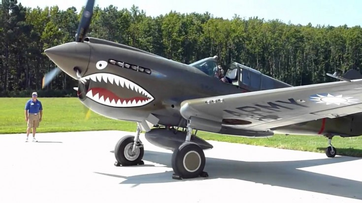 Awesome P 40 Warhawk Start Up + Flight Demo | World War Wings Videos