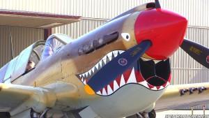 Curtiss P-40 Warhawk Engine Start-Up, Flyby & Engine Shut-Down