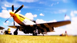 "P-51D Mustang ""Ferocious Frankie"" Looking And Sounding Good"