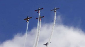 North American T-6 Texans: Spectacular Radial Engine Sounds!