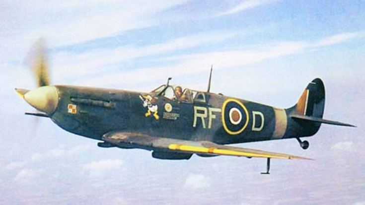 No. 303 Squadron: A Little Known Story Of Poland's Forgotten Few | World War Wings Videos