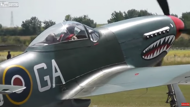 The Shark Mouth P 51 Mustang Looks Mean World War Wings