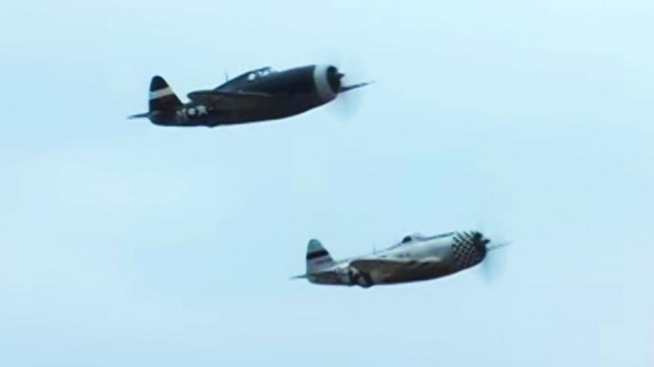 Two Thunderbolts Strike: Pure Flight Action | World War Wings Videos