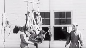 The Way They Trained WWII Paratroopers Was Really…