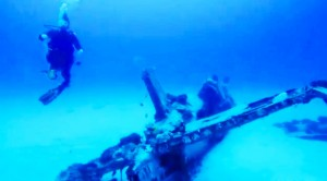 Diver Captures A Corsair Like You've Never Seen It Before