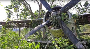 Cold War Plane Found In The Jungle – Their Disturbing Discovery