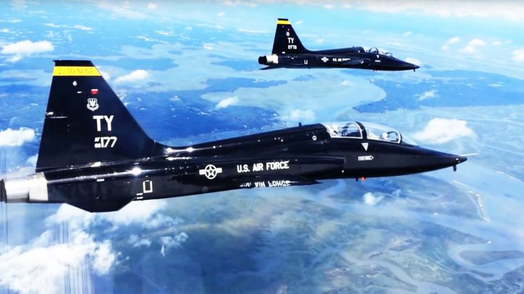 Devoted Pilot Reunites With His T-38 After 34 Years | World War Wings Videos