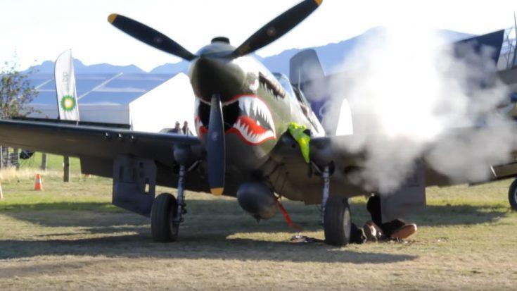 P40E Kittyhawk Test Firing Big Guns – Rattles Cameraman and Shakes Up Everything Around | World War Wings Videos