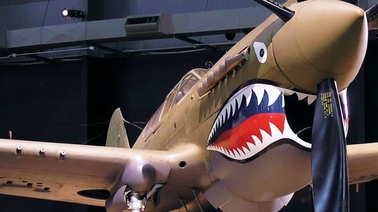 The Real Reason P-40s Had Shark Teeth-Most People Get This Wrong | World War Wings Videos