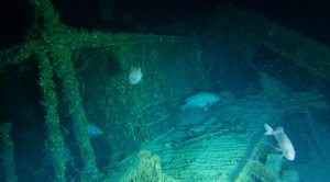 Lost German U-Boat Off North Carolina Coast Finally Explored – 45 Bodies Still Trapped In The Hull