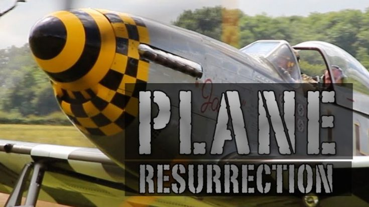 This New Show Is Everything A Warbird Fan Would Ever Want-Check Out The Trailer | World War Wings Videos