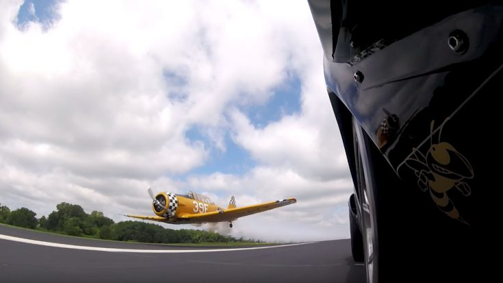 Watch A Stunt Pilot Race His SNJ-6 Texan Against A Ford GT-40R | World War Wings Videos