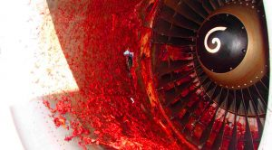 What Exactly Happens To A Jet Engine During A Birdstrike?