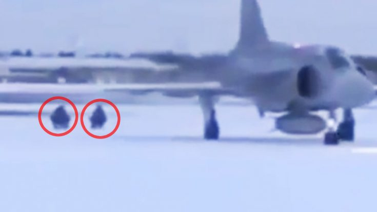 Getting Pulled By A Jet On Sleds Is Something You've Got To See To Believe | World War Wings Videos