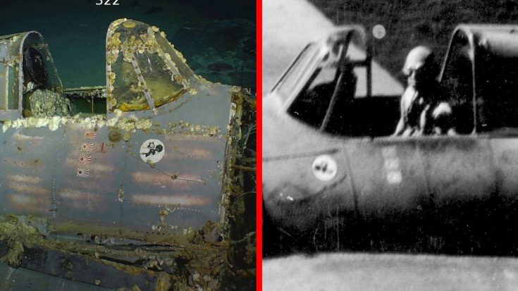 Wildcat Just Found At USS Lexington Wreck More Important Than You Think | World War Wings Videos