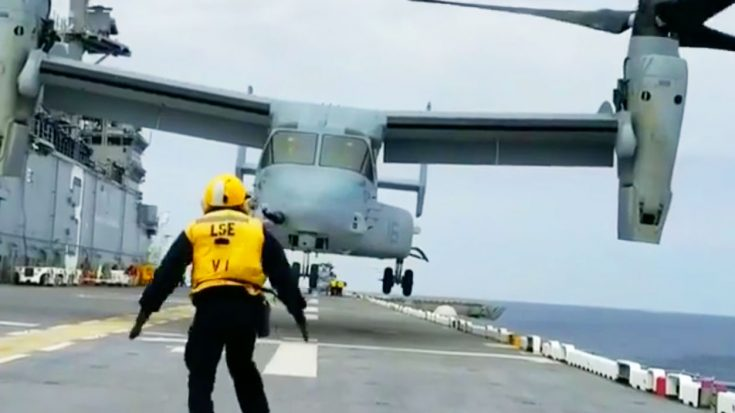 Here's How Incredibly Squirrelly V-22s Get 20 Feet Above Water-Buckle Up | World War Wings Videos