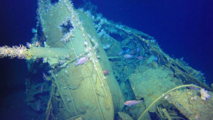 Ocean Expedition Was Searching For Lost WWII Vessel – Discovered This Instead | World War Wings Videos
