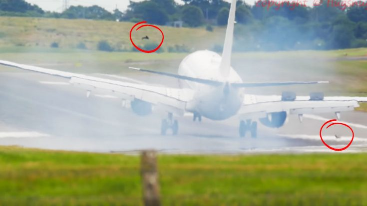 A Plane Just Made An Emergency Landing As Debris Exploded From Main Gear | World War Wings Videos