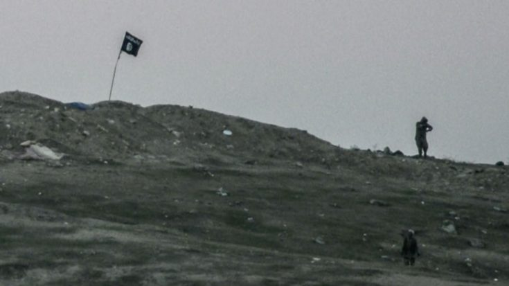 ISIS Put Their Flag On Top Of A Hill And Got Immediately Bombed To Hell | World War Wings Videos