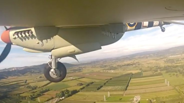 5 Years And $10 Million Later – Watch This Mosquito Take Its First Flight | World War Wings Videos