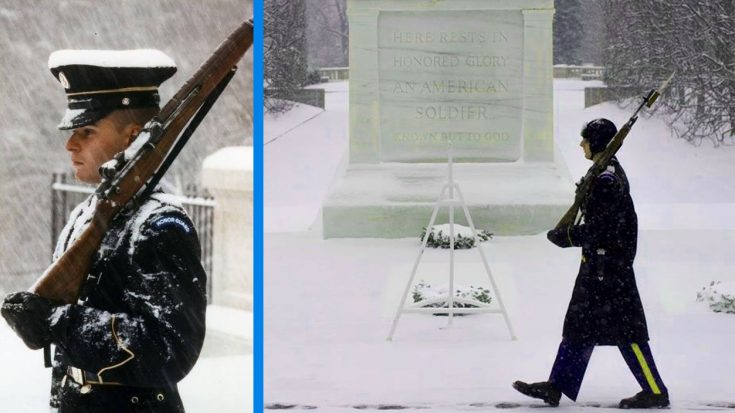 As 75% Of U.S. Is Frozen, The Guards At The Tomb Of The Unknowns Aren't Fazed | World War Wings Videos