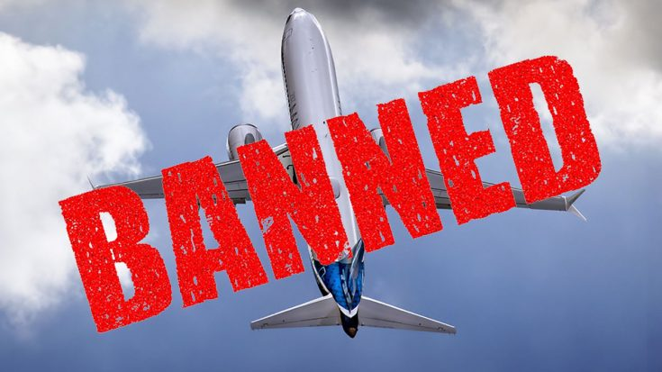 U.K. Bans Boeing's Newly Delivered Aircraft In Light Of Recent Crashes | World War Wings Videos