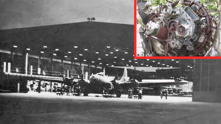 This U.S. Hike To A 1943 B-17 Crash Site Is Worth The Blisters | World War Wings Videos